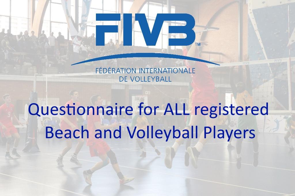 FIVB Questionnaire